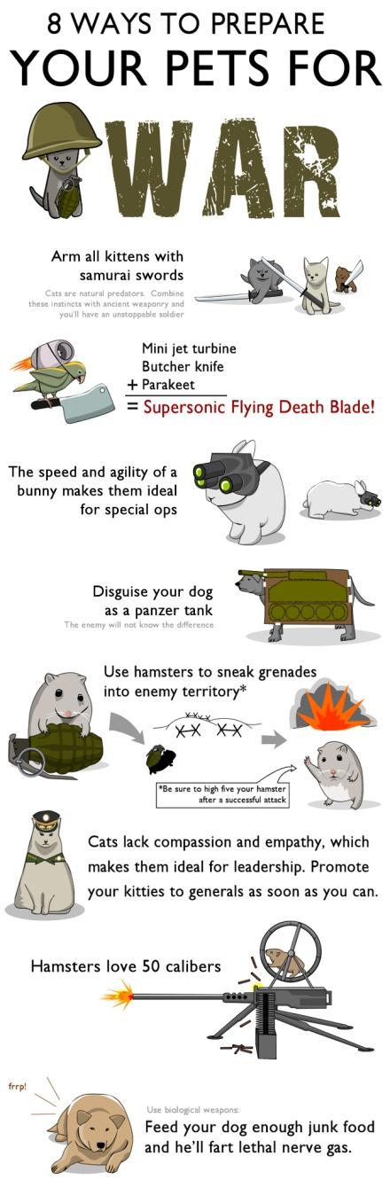 Prepara tu mascota para la guerra